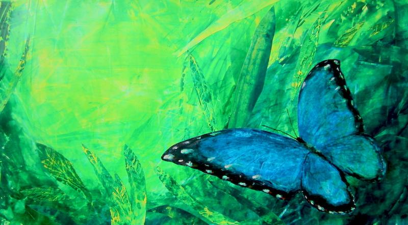 blue moroho butterfly
