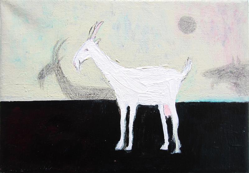 koza a stin