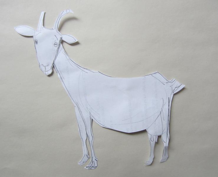 skica kozy