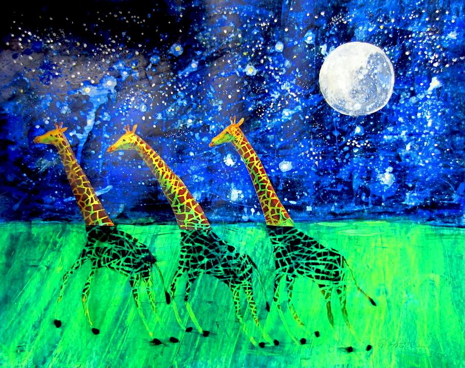 Three swimming giraffes